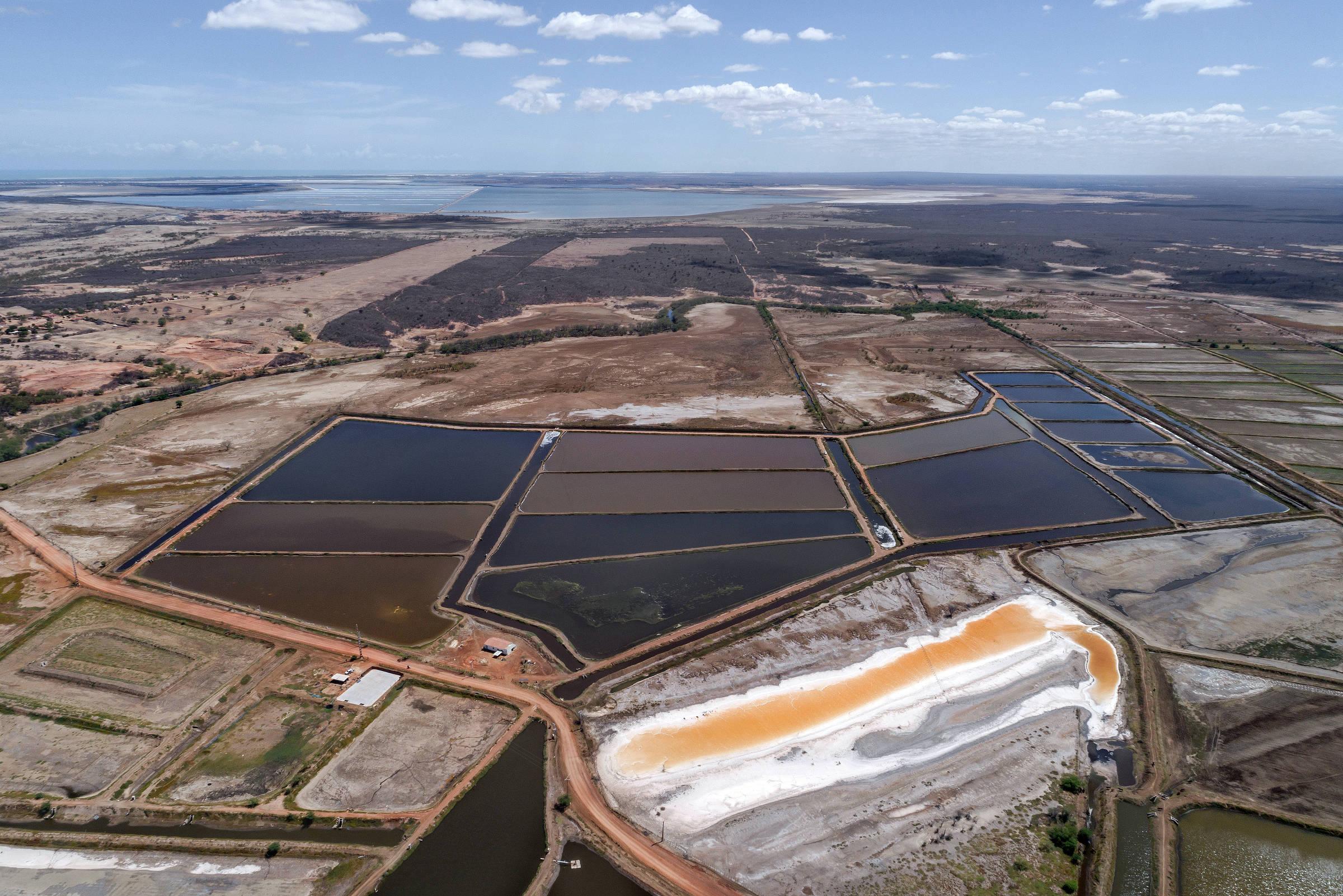 Cenários desérticos na rodovia RN-118, no Rio Grande do Norte; abaixo, criação de camarão afetada pela seca na região da foz do rio Piranhas