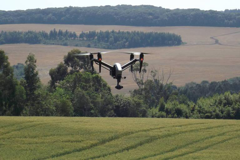 Drones mapeiam plantações do interior de SP; tecnologia auxilia o produtor para reduzir custos e aumentar produtividade