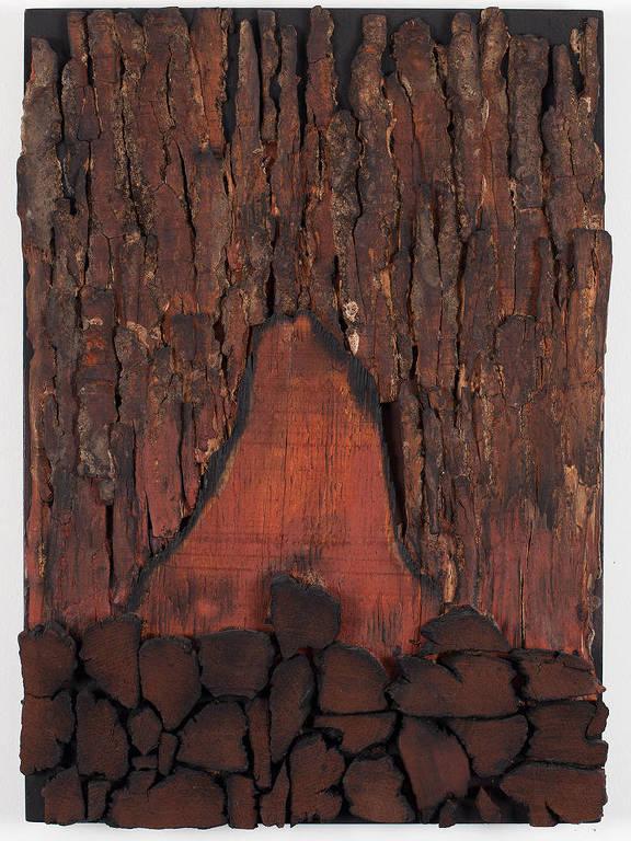 Exposição de Frans Krajcberg na galeria de Paulo Kuczynski