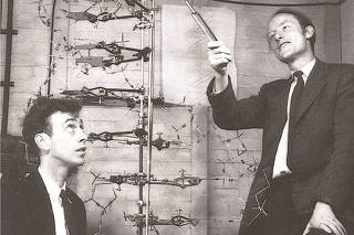Francis Crick with James D. Watson, co-discoverers of the structure and function of DNA, are shown in this image taken circa 1953