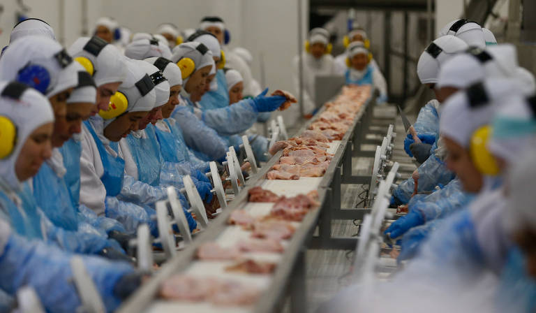 Linha de produção do frigorífico SIF 530, da Seara, do grupo JBS em Lapa (PR)