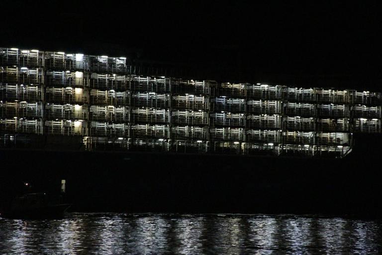 Navio com gado vivo deixa o porto de Santos (SP)