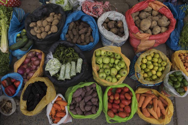 Nutricionistas ensinam a preparar, resfriar e armazenar comida