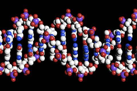 Genoma de 15 mil brasileiros será desvendado em projeto inédito no país