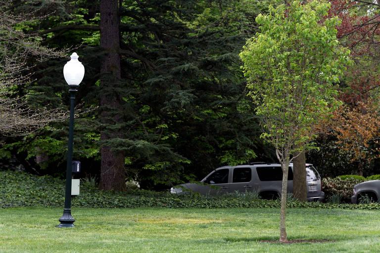 Gramado na Casa Branca onde foi plantada a árvore por Macron e Trump, agora sem a planta; a mancha amarela indica o local da plantação