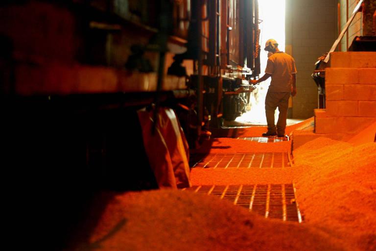 homem parado em frente a um vagão do terminal de exportação de soja no Porto de Santos
