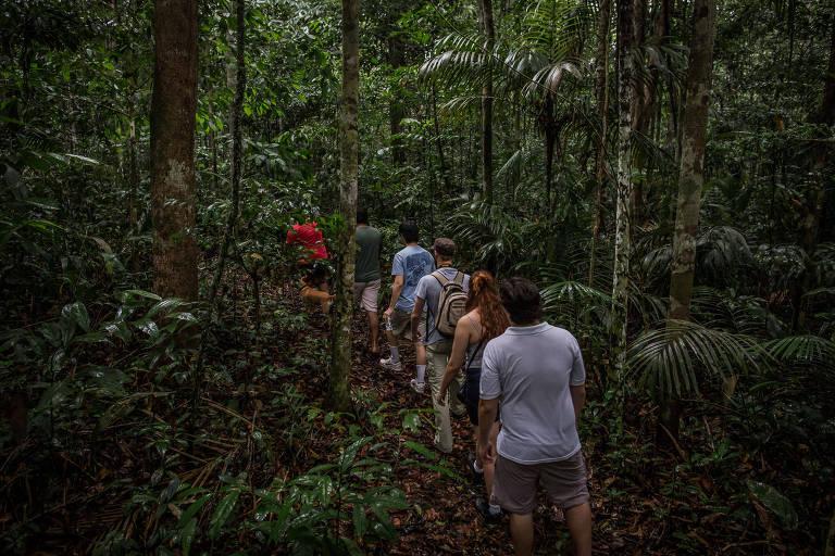 Ribeirinho troca corte de madeira por turismo ecológico