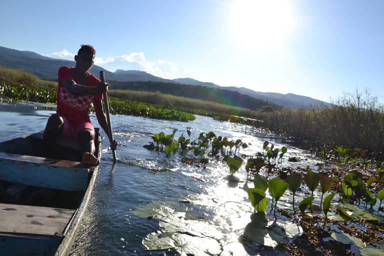 Guia conduz caanoa que leva turistas em passeio no pantanal de Marimbus, na Chapada Diamantina, na Bahia