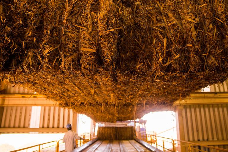 Tecnologia brasileira produz etanol a partir do bagaço da cana