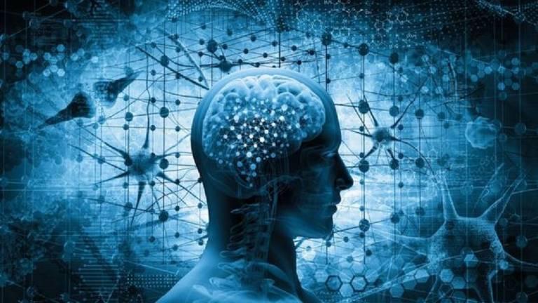 Cientistas descobriram que cérebro infantojuvenil ainda não está preparado para lidar com a complexidade das emoções