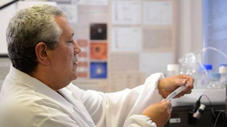 Pedro Ismael da Silva Júnior descobriu a gomesina