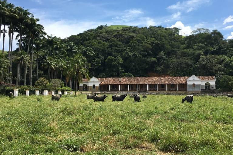 Vale do Café (RJ)