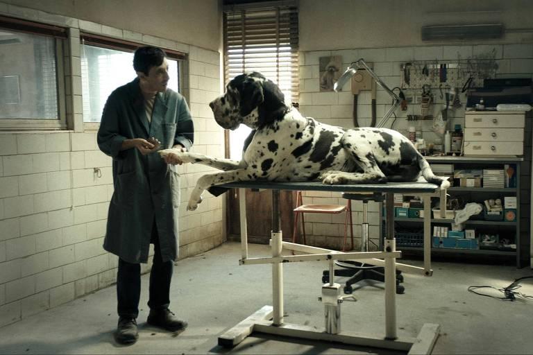 8 ½ Festa do Cinema Italiano traz filmes premiados em Cannes - 27 07 ... ad8facfe931e0