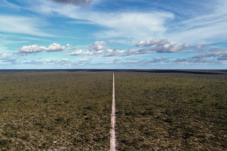 Vista do cerrado bahiano em Correntina, oeste bahiano, com uma estrada no meio