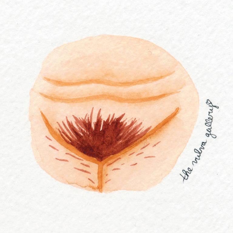 Uma galeria de vulvas