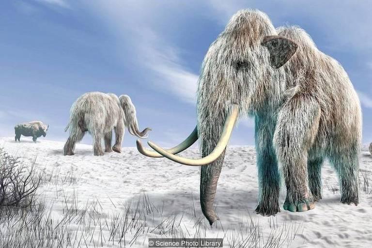 Seria possível clonar um mamute?