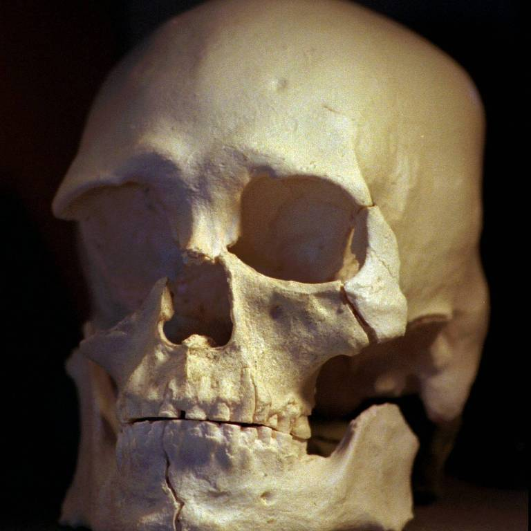 Esqueleto do Homem de Kennewick