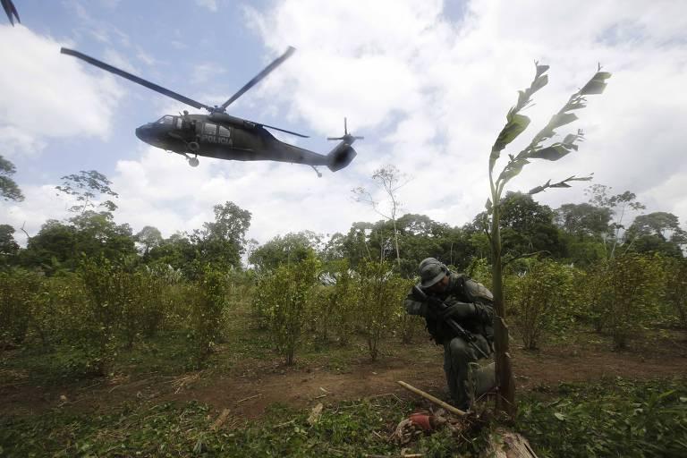 Policial corta pés de folha de coca em Tumaco, no sudoeste da Colômbia