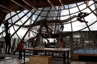 Esqueleto de dinossauro é exibido na torre Eiffel antes de leilão