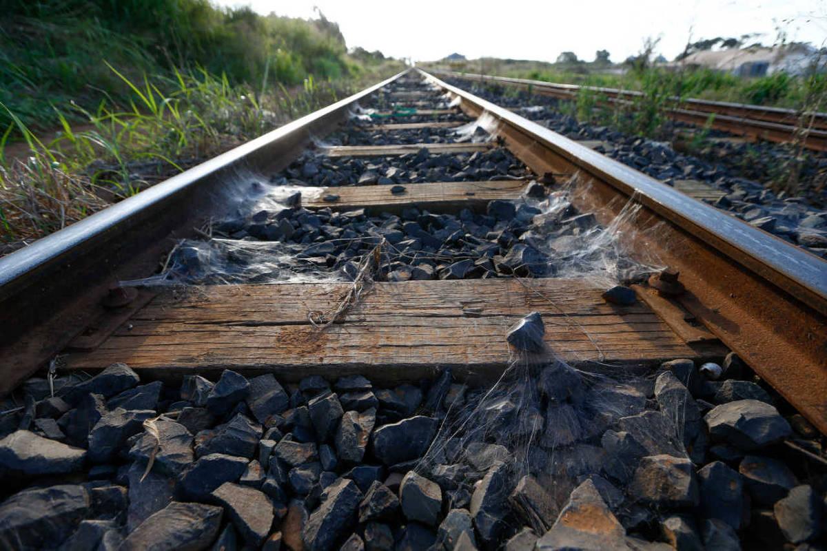 Apesar de entraves, governo espera leiloar Ferrogrão ainda em 2021