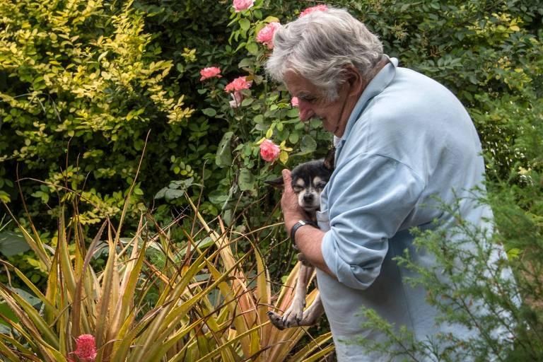 Ex-presidente José Mujica carrega cachorrinha Manuela