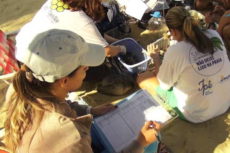 Coleta e identificação de resíduos realizada pelo Instituto Mar Azul no litoral de São Paulo
