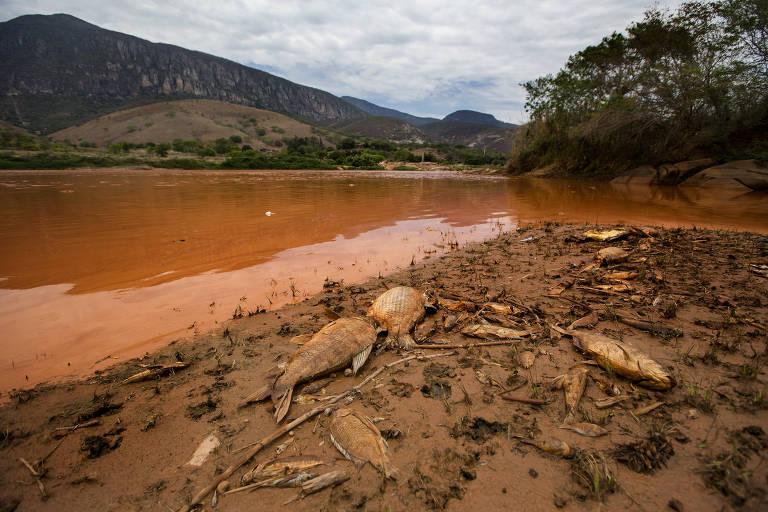 Justiça abre brecha para livrar executivos da Samarco da acusação de homicídio