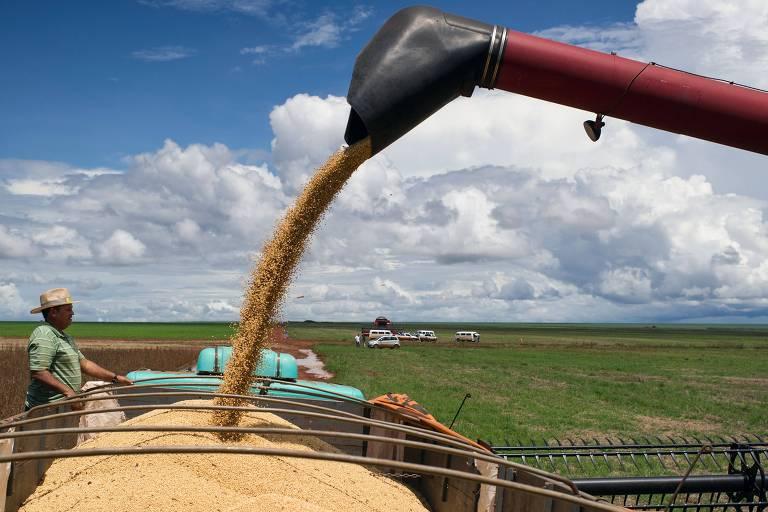 Ceifeira faz a colheita de soja, em Campo Novo do Parecis (MT)