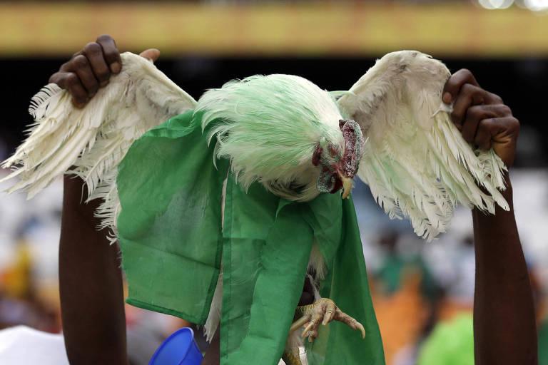 """Um torcedor da Nigéria exibe uma galinha com as cores da seleção, durante uma partida contra Burkina Faso, pela Copa Africana de Nações. O Ministério da Cultura da Rússia vetou a entrada das """"galinhas da sorte"""" nos estádios da Copa do Mundo"""