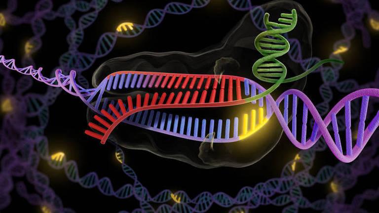 Desenho esquemático mostrando ação da técnica Crispr-cas9, capaz de editar o DNA