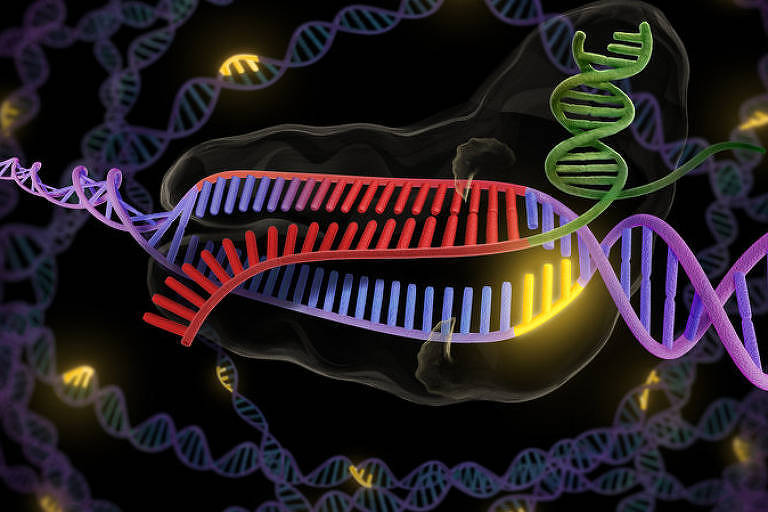 Em teste, técnica corrige defeito genético de doença neuromuscular sem cura