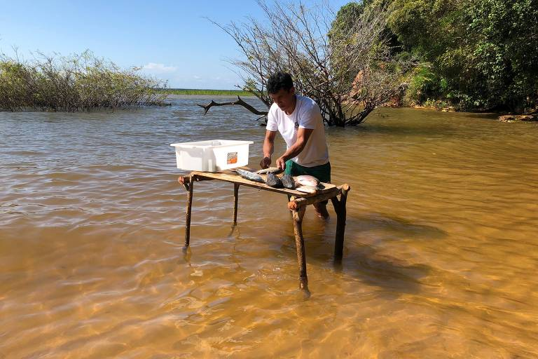 Pescador limpa os peixes de água doce na beira do rio Tapajós, em frente ao restaurante Casa do Saulo (Santarém, PA)