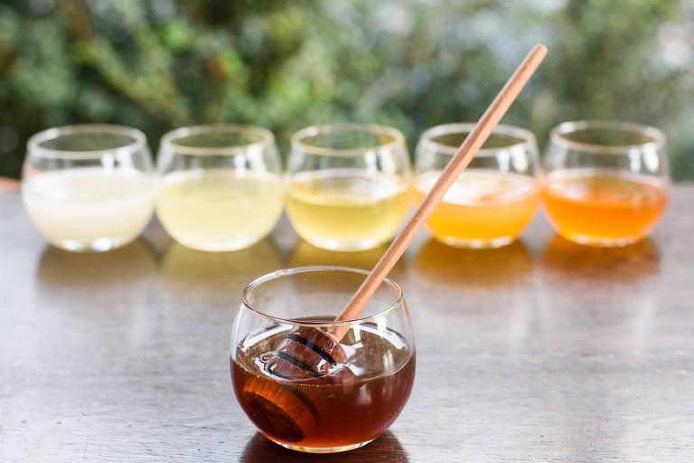 Tiúba e jataí são opções de mel da MBee