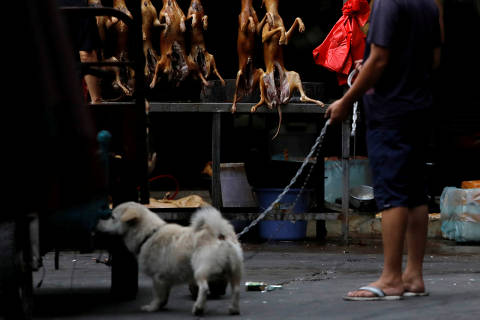 A man walks with his pet dog as he talks to a vendor who sells dog meat at a market during the local dog meat festival in Yulin, Guangxi Autonomous Region, China June 21, 2018. REUTERS/Tyrone Siu     TPX IMAGES OF THE DAY ORG XMIT: GGGCHN12