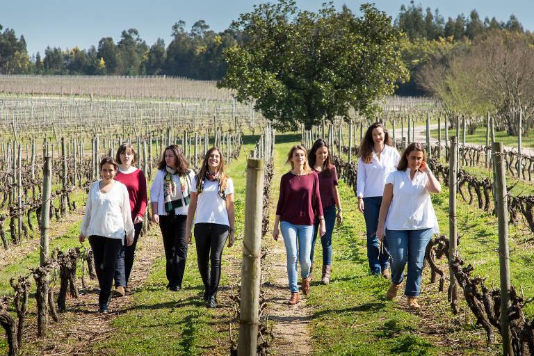 Mulheres portuguesas que produzem vinhos