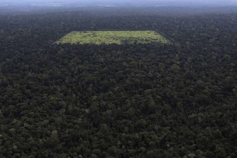Vista aérea mostra área de floresta amazônica desmatada por madeireiros em Santarém (PA)