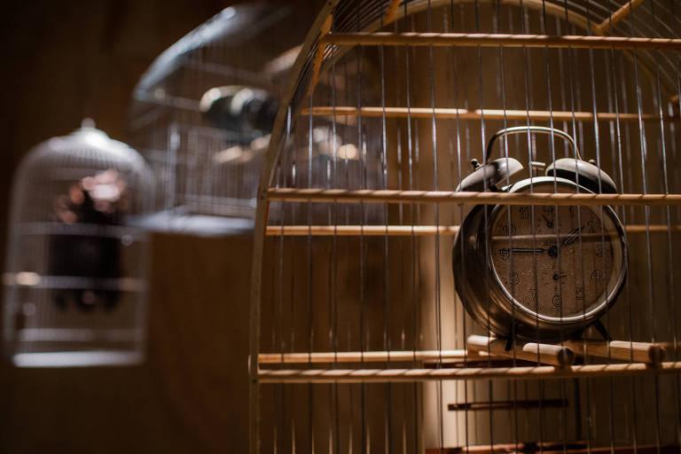 Objetos aprisionados em gaiolas na sala destinada ao filme 'O Marido Era o Culpado' na exposição sobre Hitchcock, no MIS