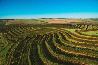 Vista aérea da Fazenda Uberaba