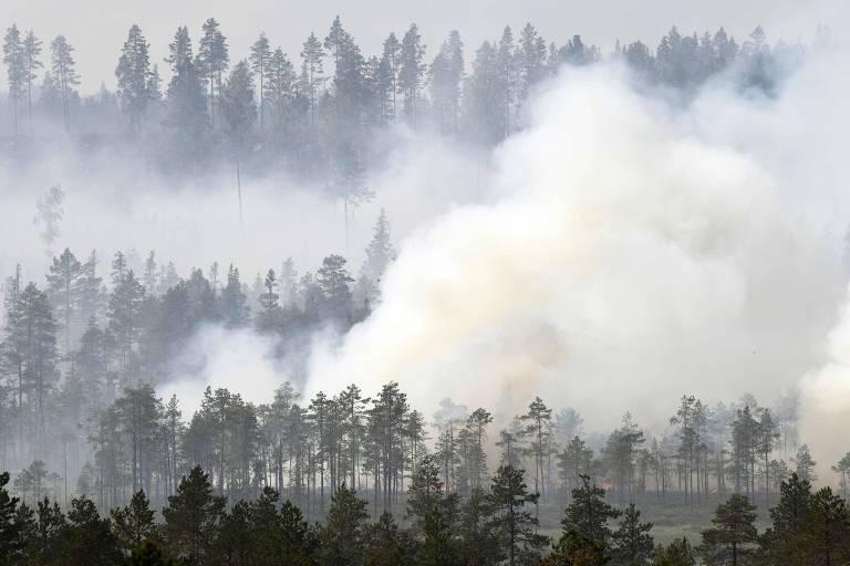 Floresta pega fogo em Korskrogen, na Suécia