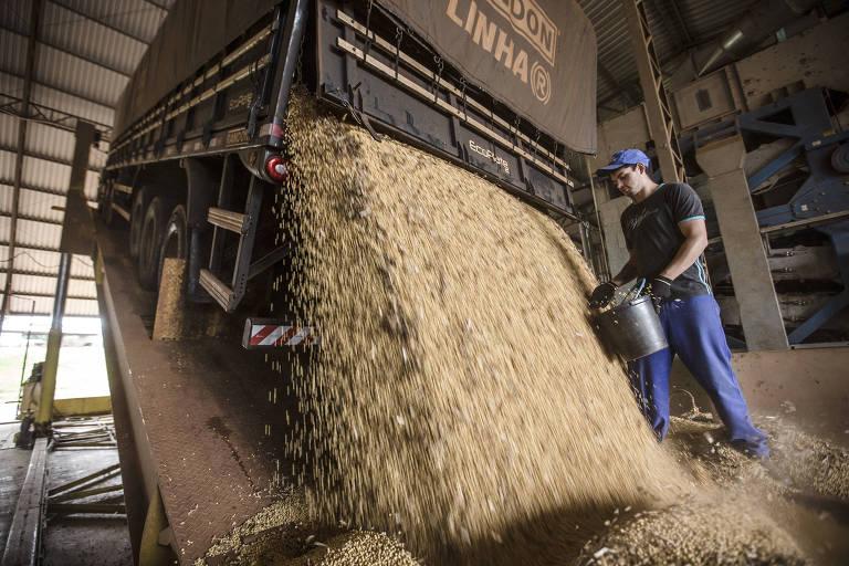 Funcionário trabalhando em silo em Corbélia, no Paraná
