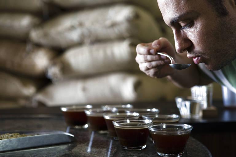 Homem prova xícaras de café