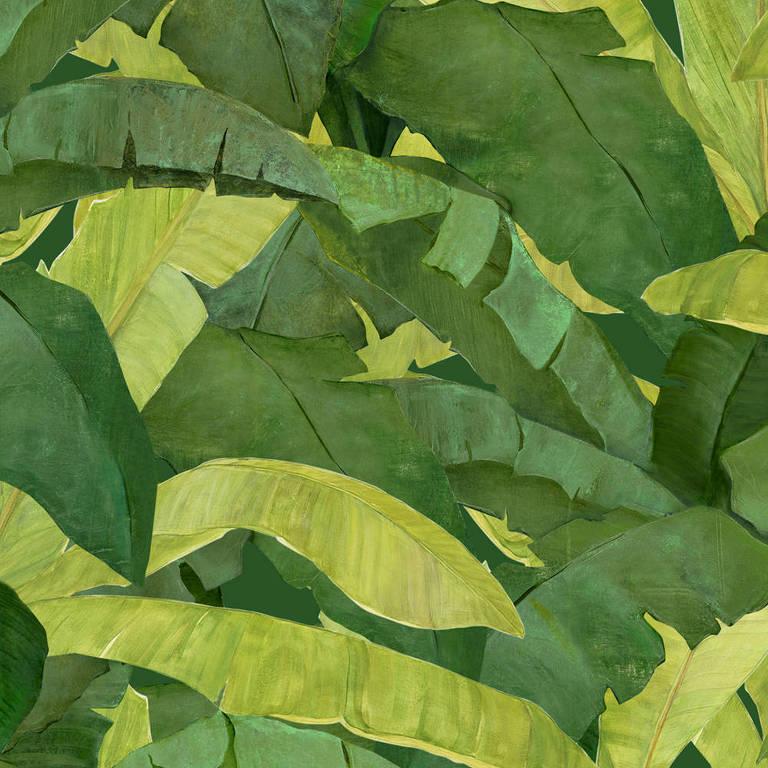 Papel de parede Folhagens Verde, de vinílico, por Adriana e Carlota. R$ 514 (3 faixas de 0,53 m x 2,9 m), da Branco