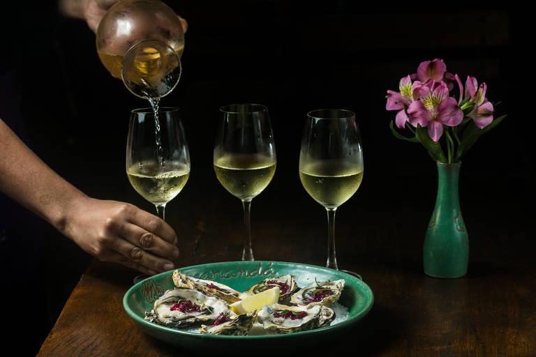 Degustação de vinho branco e ostras