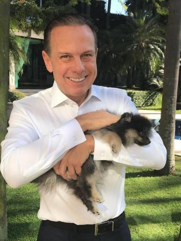 Doria, pré-candidato do PSDB à Presidência, segura seu cachorro Ziggy