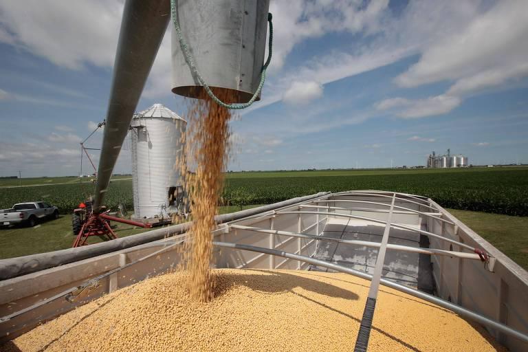 Carregamento de soja em Illinois