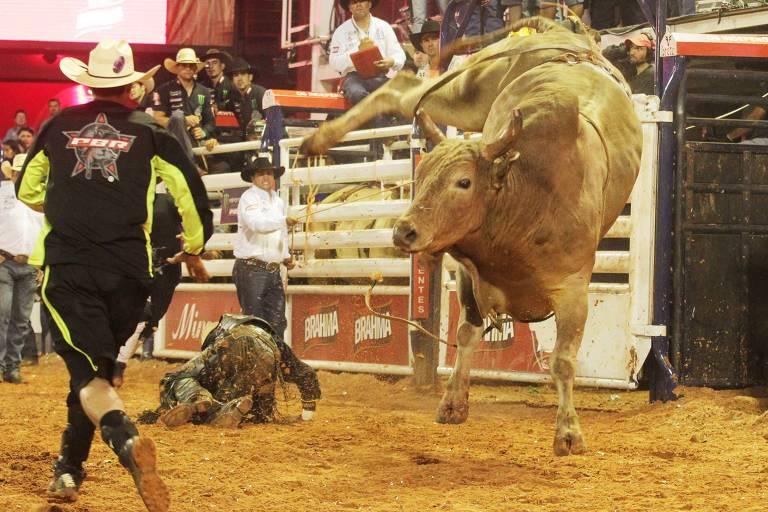 O touro Agressivo em uma edição da festa de peão de Barretos