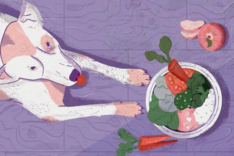 Ilustração de Rodrigo Fortes para a matéria de alimentação vegetariana para animais