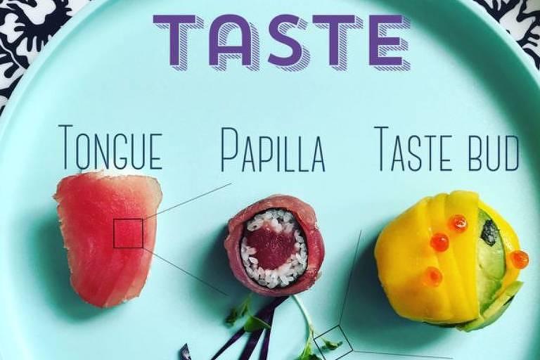 A pesquisadora ilustrou detalhes do sistema de reconhecimento do sabor dos alimentos: a língua, a papila gustativa e os receptores sensoriais