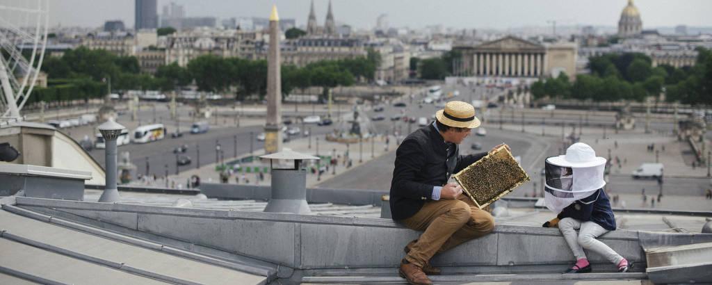 Audric de Campeau trabalha com sua filha em uma colmeia acima da Place de la Concorde em Paris