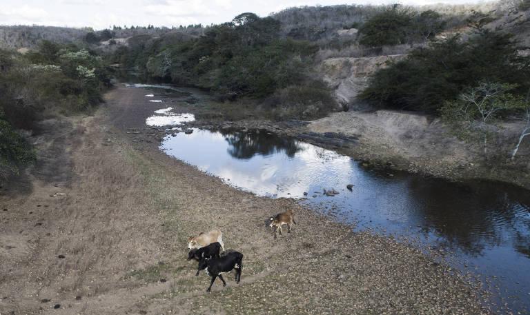 Seca em Minas Gerais